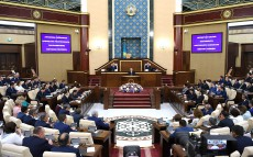 Participation in the joint session of the Parliament Chambers